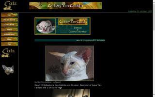 Cattery Van Callisto