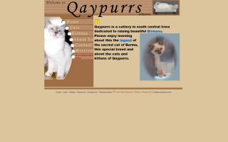 Qaypurrs Birmans