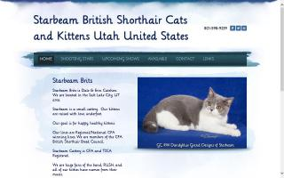 Starbeam British Shorthair Cattery