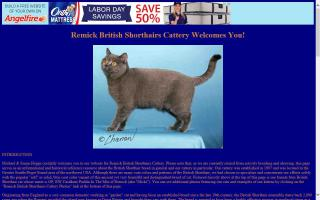 Remick British Shorthairs Cattery
