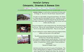 HotzCat Cattery
