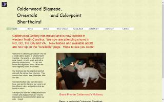 Calderwood Cattery