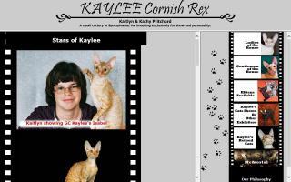 Kaylee Cornish Rex