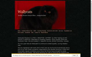 Wallycats Persians