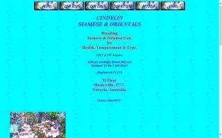 Cindylin Siamese & Orientals