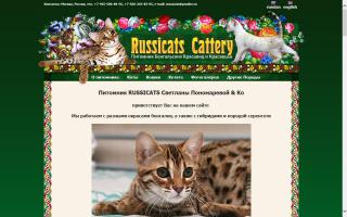 Russicats Cattery