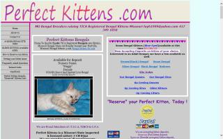 Perfect Kittens