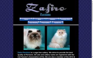 Zafiro Persians and Himalayans