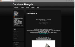 Dominant Bengals