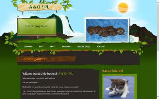 A&O*PL British Shorthair Cattery