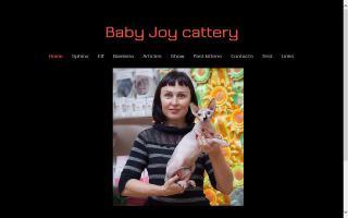 Baby Joy / Питомник Канадских Сфинксов