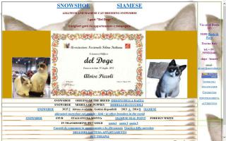 Snowshoe Cat Breeders Directory - O Kitty!