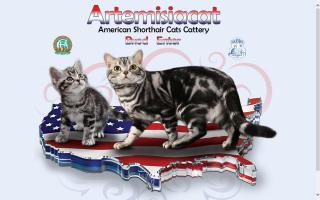 Artemisia Cat
