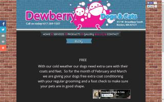 Dewberry Dogs  & Cats