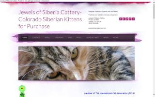 Jewels of Siberia Cattery