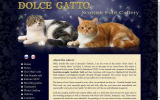 Dolce Gatto