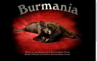 Burmania Cattery