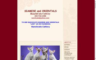 RanchCats Cattery
