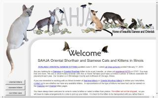 United States Oriental Cat Breeders Directory - O Kitty!