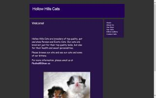 Hollow Hills Cats
