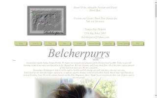 Belcherpurrs