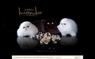 Iwanda Persians