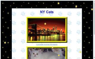 NY Cats Cattery