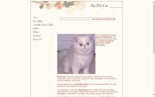 Ann Pat's Cats