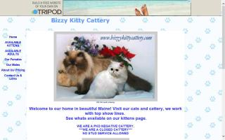 Bizzy Kitty Cattery