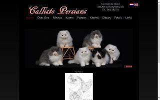 Callisto Persians
