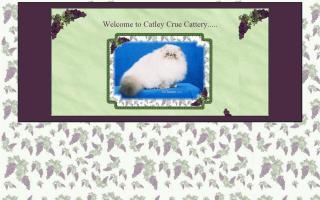 Catley Crue Cattery