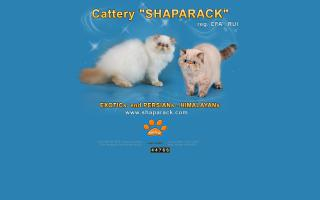 Shaparck Cattery