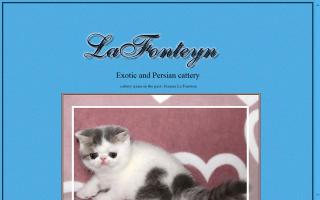 LaFonteyn Exotics & Persians