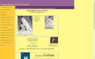Furkats Maine Coon Cattery