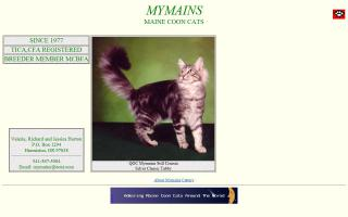 MyMains Maine Coon Cattery