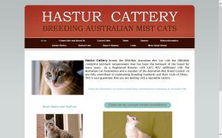 Hastur Cattery