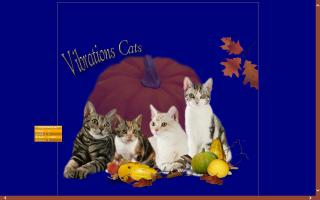 Vibrations Cattery