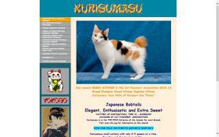 Kurisumasu Japanese Bobtails