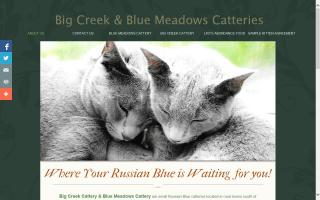 Big Creek Cattery