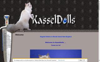 Kasseldolls Cattery