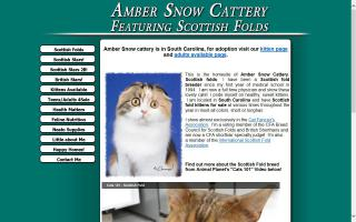 Amber Snow Cattery