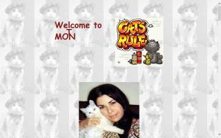 Montessori Cats