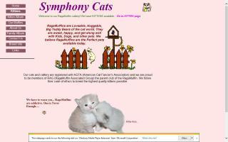 Symphony Cats