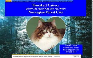 Thorskatt Cattery