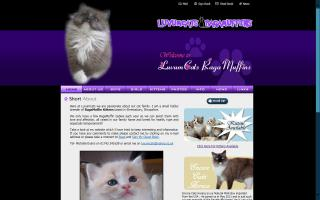 Luvumcats Ragdolls