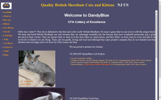 DandyBlue Cattery