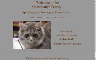 Mesterkatter Cattery